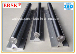Cheapest Linear Rail Support for Linear Guide pictures & photos