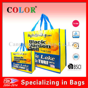 Wholesale PP Non Woven Reusable Shopping Bag