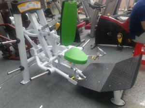 Excellent Hoist Fitness Machine Standing Calf Raise (SR2-12) pictures & photos