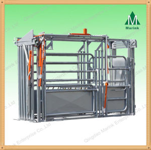 Hot Galvanized Cattle Weighing Scale on Sale pictures & photos