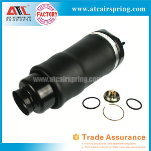 for Mercedes Benz W251 Rear Shock Absorber with Ads 2513201831 2513202931 2513203131 2513200631 pictures & photos