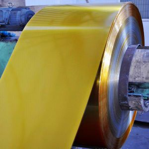 High Grade Quality Mr Grade Tinplate Coil/Plate for Canning pictures & photos