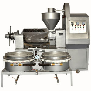 Auto Oil Press Machine for Sunflower pictures & photos