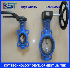 D341X Worm Wheel Flange Type Soft Sealing Butterfly Valve
