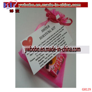 Sister`S Survival Kit for Birthday Christmas Fun Novelty Gift (G8129) pictures & photos