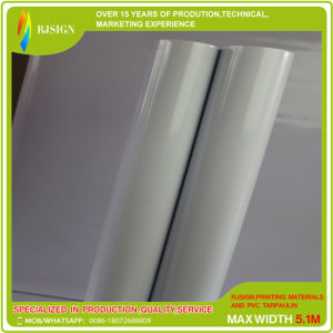 Advertisting and Decoration PVC Adhesive Vinyl with White Glue pictures & photos