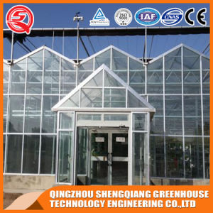 Agriculture Multi Span Glass Hydroponic Green House for Vegetables Planting/Flower Exhibition