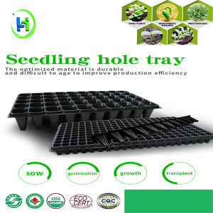Black 128 Cells Seed Nursery Pot Trays For Vegetable Tree Forest Plant