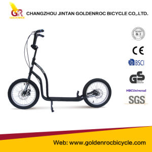 "(GL1616-JK) High Quality 16"" Children Scooter with Ce pictures & photos"