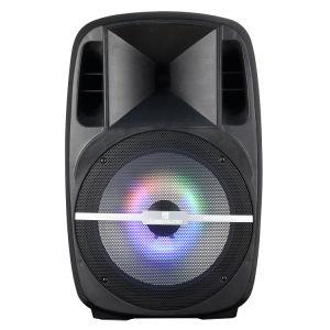 Audio 15inch High Power Amplifier Voice Coil Speaker Audio Speaker Box