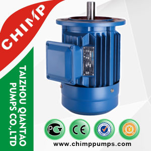 Chimp 3 Phase AC Induction Fan Electric Motor pictures & photos