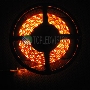 Hot-Sale! 60LEDs/M SMD2835 Flexible LED Light Strip 12V/24V DC pictures & photos