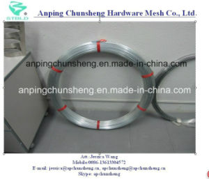 High Tensile Galvanized (eliptical) Oval Wire pictures & photos