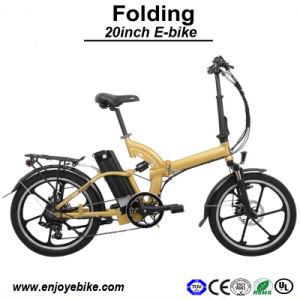 20inch 250W Shock Absober E-Bicycle E Bike Electric Bicycle (PE-TDN05Z-2)