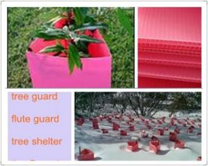4.5mm Green Plastic Tree Guard, Corflute Guard, Sureflute Rigid Guards pictures & photos