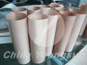 Non-Stick PTFE Coated Fiberglass Cloth for Filter Bag pictures & photos