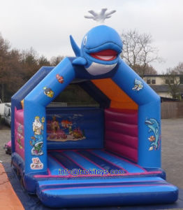 Commercial Inflatable Sport Bouncer Manufacturer From China (B100)