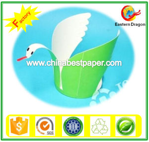 230g Double PE Coated Paper/Tea Cup paper pictures & photos