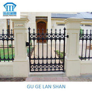 High Quality Crafted Wrought Iron Gate/Door 040 pictures & photos