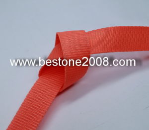 High Quality Eco-Friendly PP Webbing for Garment Accessories pictures & photos