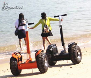 Kingwheel Hot Sale 2000W Two Wheels off-Road Chariot Electric Scooter with Handle Bar (KW-D001)