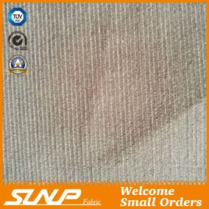 Cotton Corduroy Fabric for Shirt /Dress