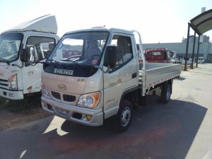 China Diesel Light Truck 1 Ton 2 Ton 3 Ton pictures & photos