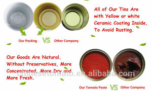 Healthy Puree Canned 400g Tomato Paste of Fine Tom Brand From China pictures & photos