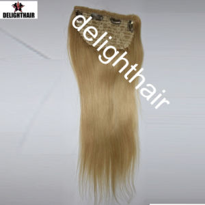 Clip in Human Hair Extensions Clip in Human Hair Extensions Nhcl-009