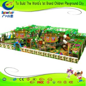 Facotry Price China Plastic Soft Indoor Playground for Kids pictures & photos