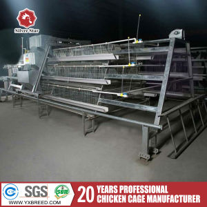 a Type 3 Layers Automatic Chicken Cage with Feeding System pictures & photos