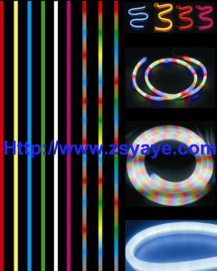 LED Neon Lights, LED Flexible Neon Lights, LED Christmas Light pictures & photos