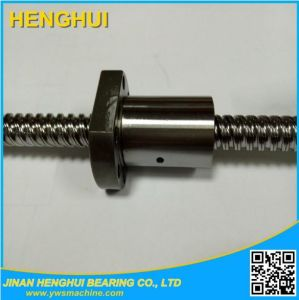 Sfu1204 Ball Screw L200mm Anti Backlash Rolled Ballscrew with End-Machining