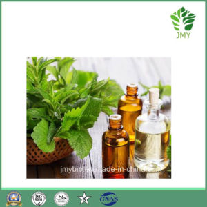 Peppermint Essential Oil 100% Purity pictures & photos
