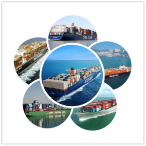 Consolidate Service From China to Nigeria Shipping Service