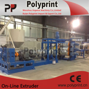 Three Layer Sheet Extrusion Line (PPSJ-100-80-45B) pictures & photos