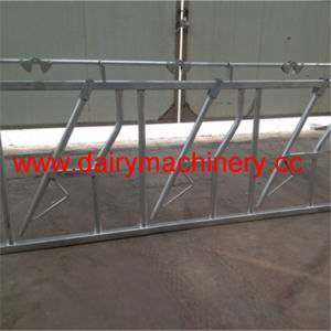 Farm Hot Dipped Galvanized Steel Cow Head Lock pictures & photos