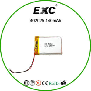 Lithium Polymer Battery Recharge for GPS pictures & photos