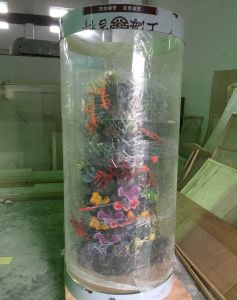 Large Round Acrylic Fish Aquarium