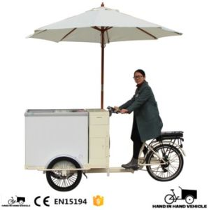 250W Xiongda Motor Freezer Cargo Trike for Wholesale pictures & photos