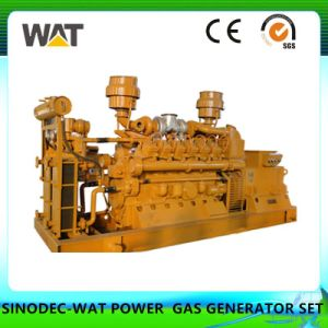 500kw Natural Gas Generator Set with Ce, SGS Certificates (WT-500GFT)