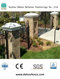 Customized High Quality Galvanized Ornamental Gate for House Decoration pictures & photos