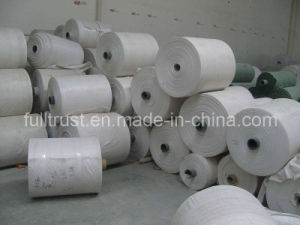 Tubular PP Woven Fabric in Roll B (12) pictures & photos