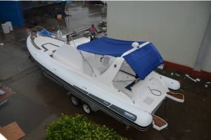 9.6 Meter Rib Boat /Luxury Boat /Rigid Inflatable Boat