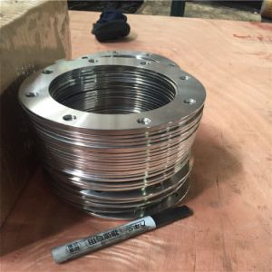 Saf2205 S31803/1.4462 DIN Plate Flange Duplex Stainless Steel Flange pictures & photos