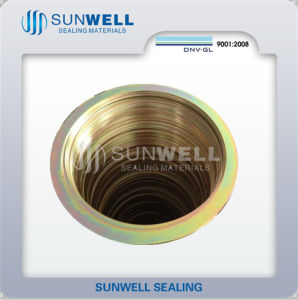 Spiral Wound Gasket, CS Rings, Zinc Plating Yellow (SUNWELL) pictures & photos