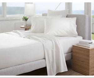 Plain White Cotton Economic Hotel Linen Bed Sheet pictures & photos