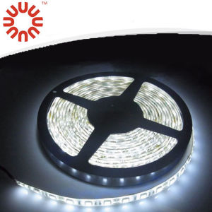Waterproof SMD3528 SMD2835 SMD5050 SMD5630 RGB LED Strip Light pictures & photos