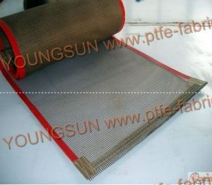 PTFE Coated Mesh Belt pictures & photos