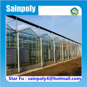 High Quality China Supplier Glass Greenhouse for Commercial pictures & photos